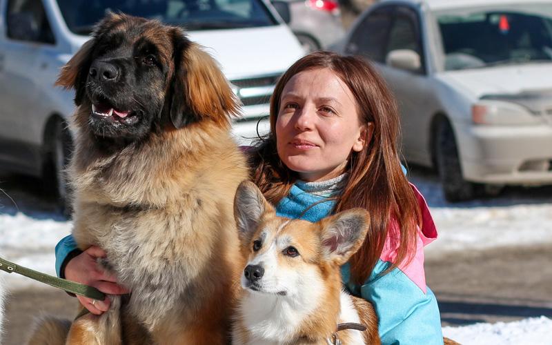 ТОП-7 редких пород собак