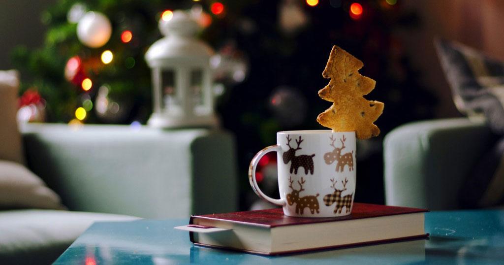 ТОП-20 книг с зимним настроением