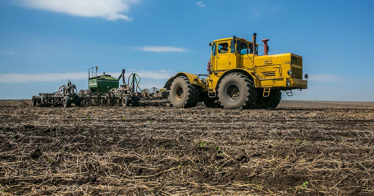 За производство льна и сои аграрии НСО получат дополнительную господдержку
