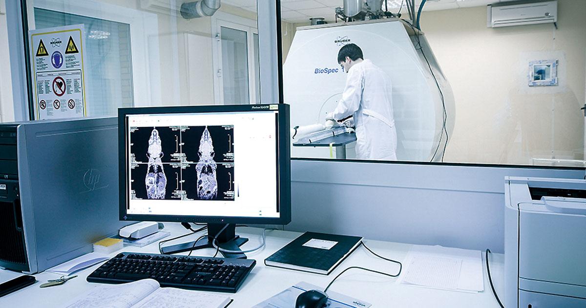 Мини-мозги имакрофаги