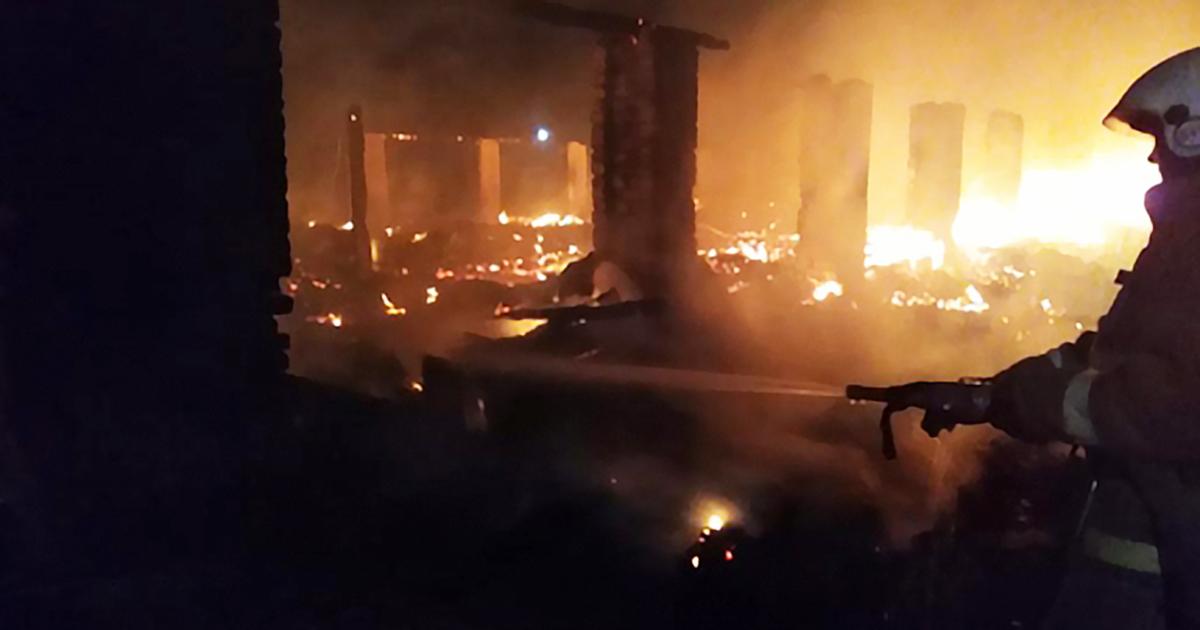 Полторы сотни телят погибли в пожаре в Новосибирской области