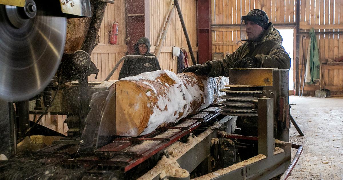 Безотходное производство внедряют лесопромышленные предприятия НСО