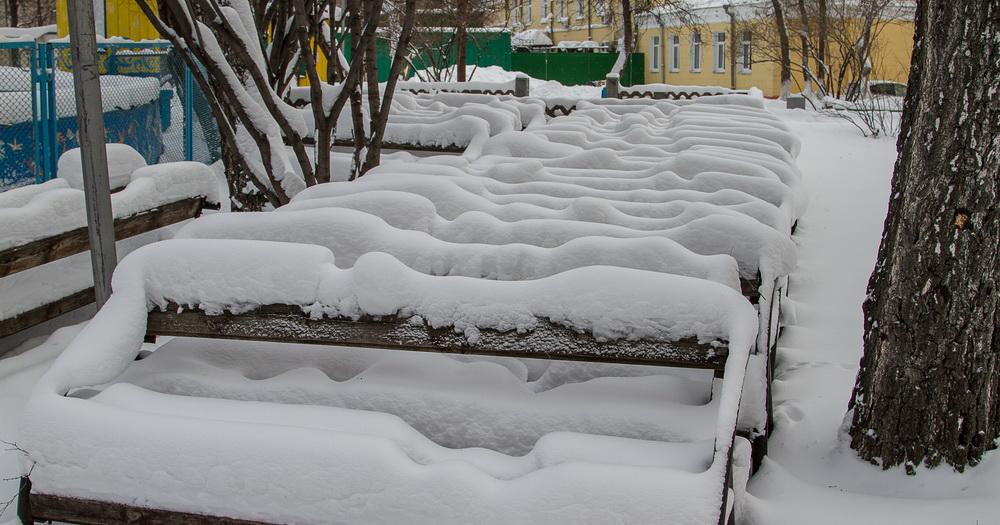 В Новосибирске ожидаются снегопады и метели