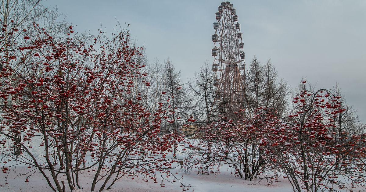Очень вредным и опасным назвали предновогодний воздух в Новосибирске