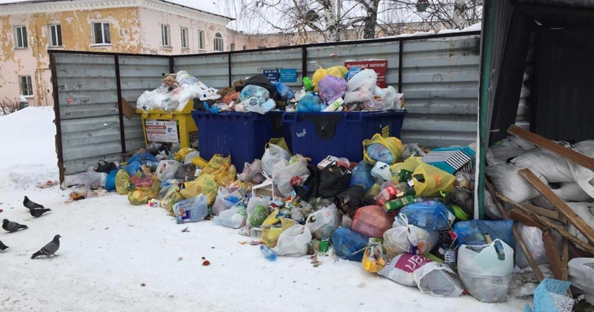 Новосибирск утопает в мусоре