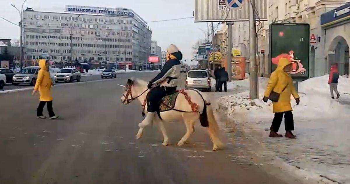 Новосибирцы встретили единорога в городе