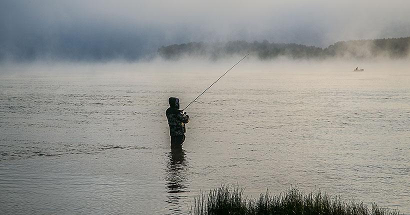 Больше пеляди и сазана смогут добывать рыбохозяйственные организации НСО