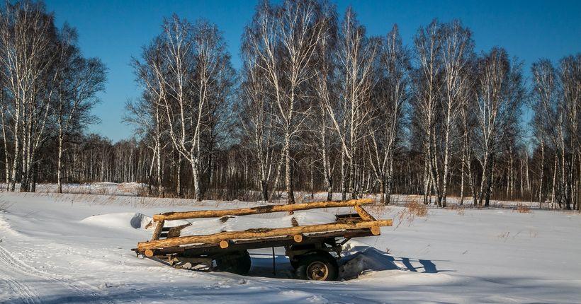 Весна начнётся в Новосибирске плюсовой погодой