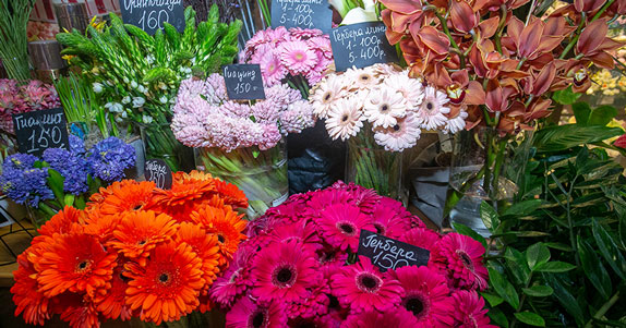 Более 10 млн цветов привезли к 8 Марта в Новосибирск