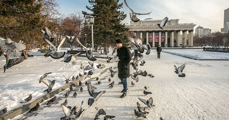 В Новосибирске на выходных ночи остаются морозными