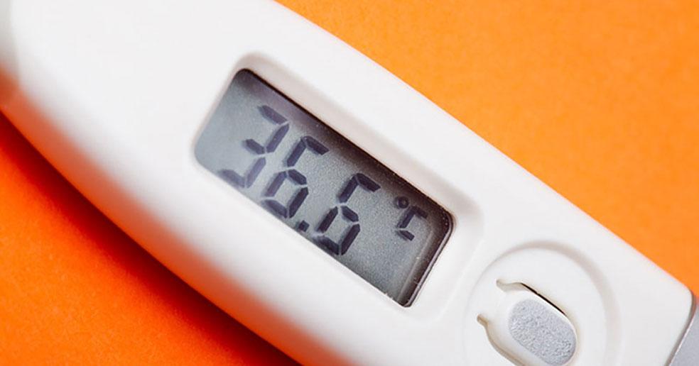 У новосибирцев будут измерять температуру на рабочих местах