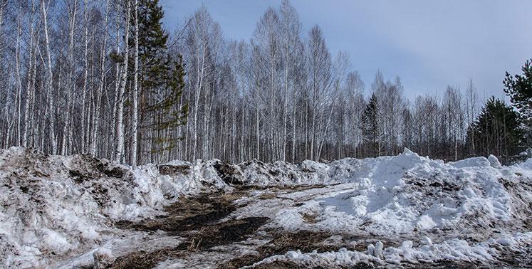 Погода в выходные: в Новосибирской области гололёд и прохладно