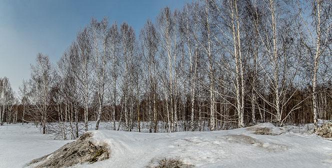 В Новосибирской области существенно похолодает