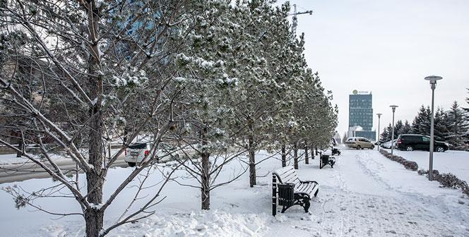 Оперативный штаб по коронавирусу передаёт: последняя информация по Новосибирской области