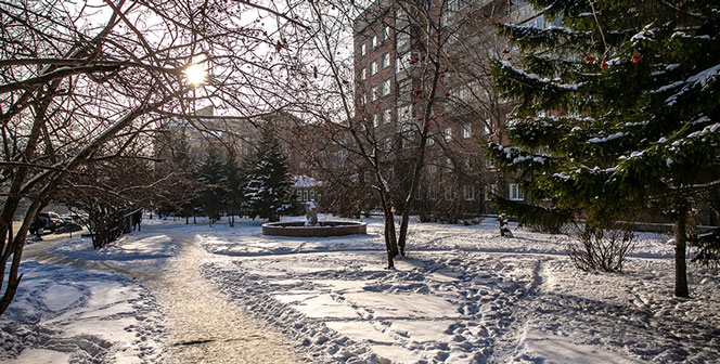 Оперштаб по коронавирусу в Новосибирской области сообщает о стабильности