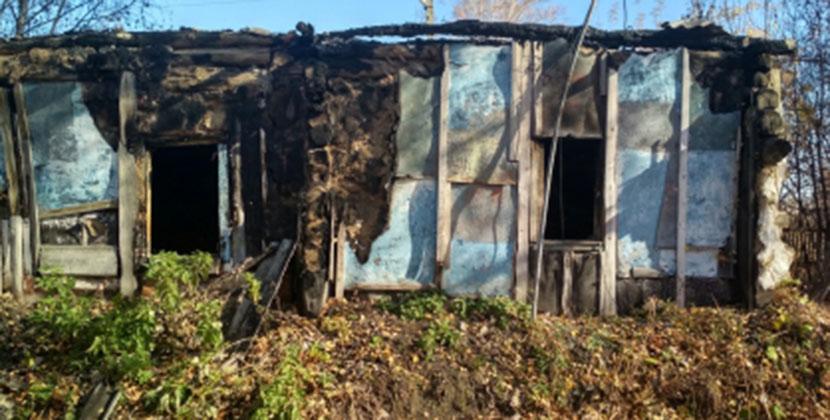 С особой жестокостью убили, забрали гармошку и бензопилу: в Новосибирской области завершили расследование