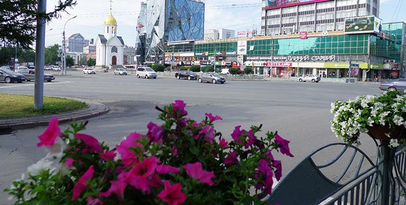 Астильба и ампельная бегония впервые зацветут в Новосибирске