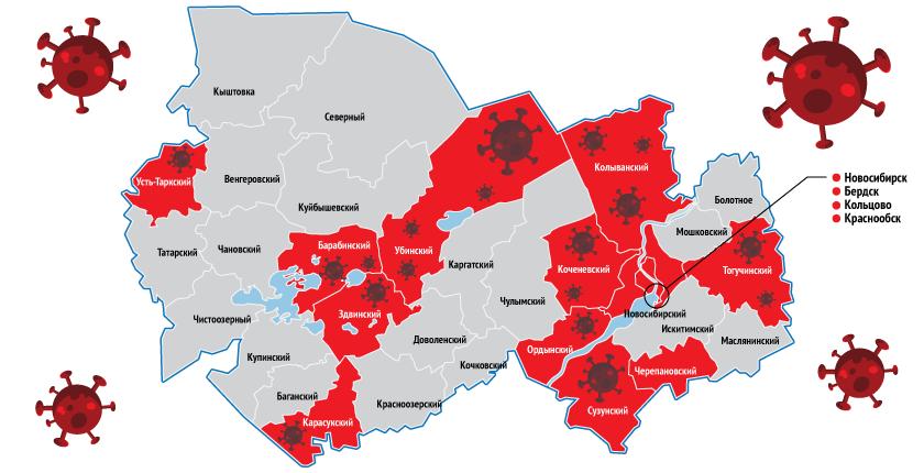 Коронавирус проник ещё в несколько районов Новосибирской области