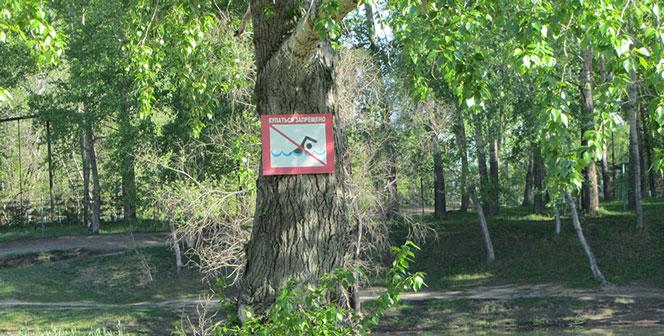 В водоёмах Новосибирска категорически запрещено купаться