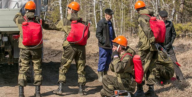 Пик весенних лесных пожаров пройден в Новосибирской области