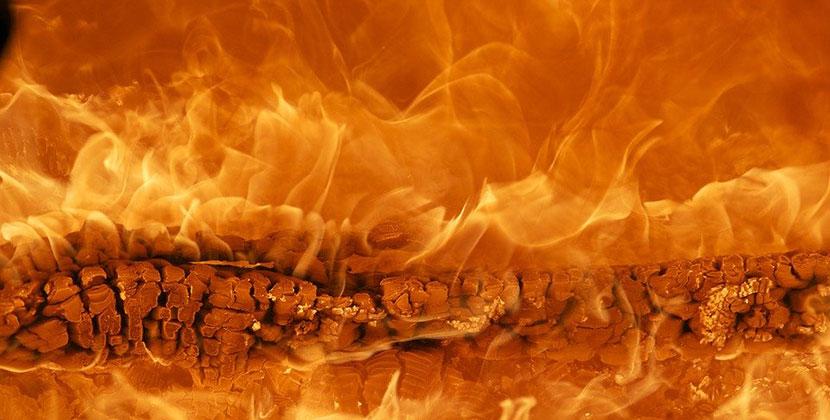 Школьник из Новосибирской области дотла спалил школу