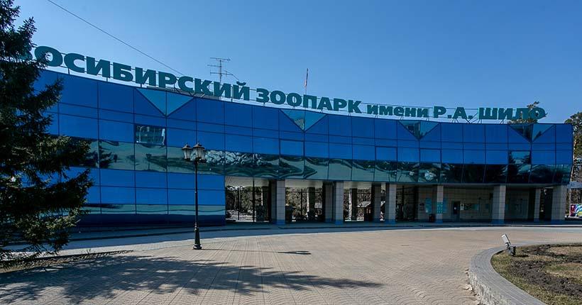 Новосибирский зоопарк ограничит количество посетителей