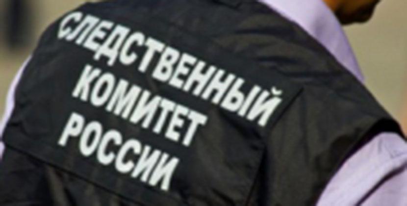 В Новосибирске местный житель признан виновным в убийстве, совершённом на почве национальной ненависти