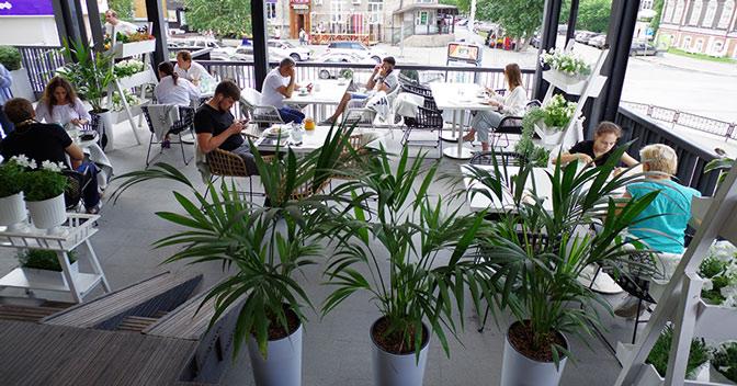 Новосибирские рестораторы попросили мэра помочь кафе и ресторанам, у которых нет летников