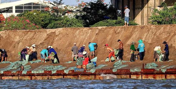 Жители и гости Новосибирска очистят берег Надежды возле строящегося волейбольного центра