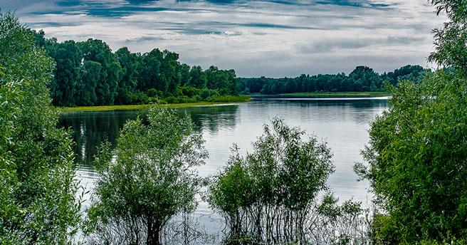 Новосибирская область привлечёт туристов грязями