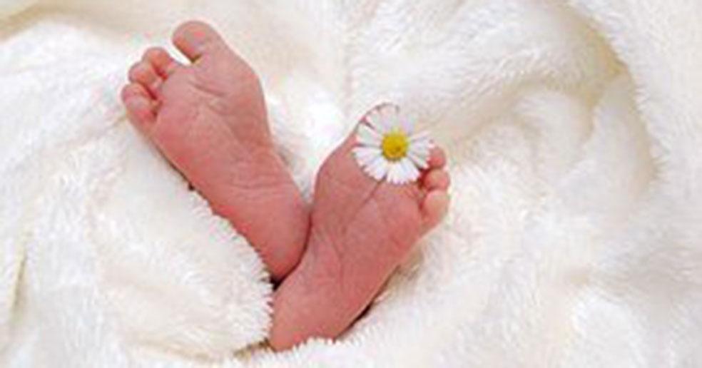 В Новосибирской области СНИЛС на ребёнка можно оформить в проактивном режиме