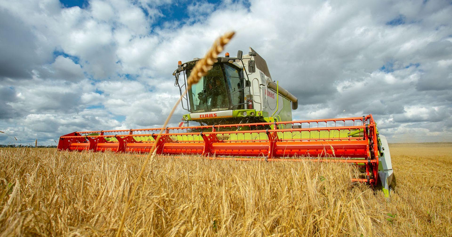 К уборке урожая приступили в Новосибирской области