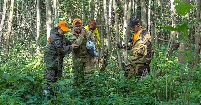 В лесах Новосибирской области с начала сезона потерялись 44 человека