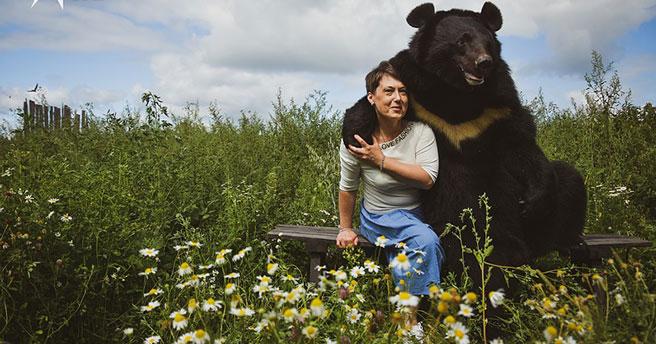 Под Новосибирском осели четыре дрессированных медведя из шапито