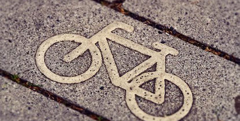В Новосибирской области должна развиваться система велодорожек