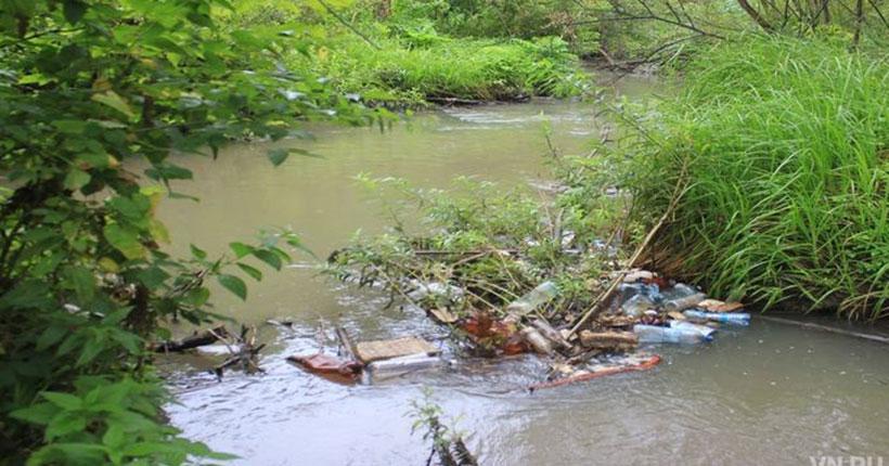 Судьба одной из девяти малых рек Новосибирска озаботила сотрудников зоопарка