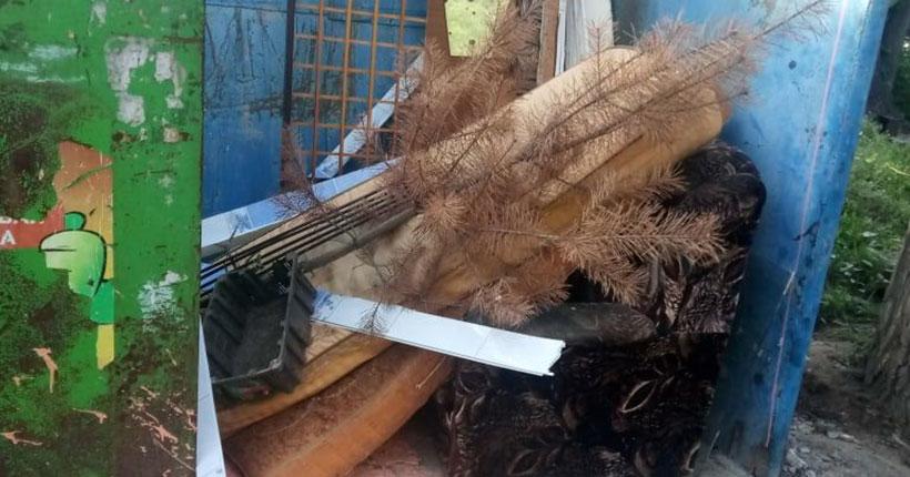 «Очередной слабак сдался»: жители Новосибирска обсуждают владельца новогодней ёлки, выброшенной в сентябре