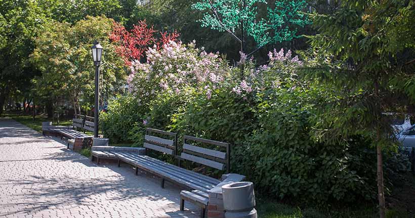 Новосибирцы смогут сами выбрать названия безымянным паркам и скверам города