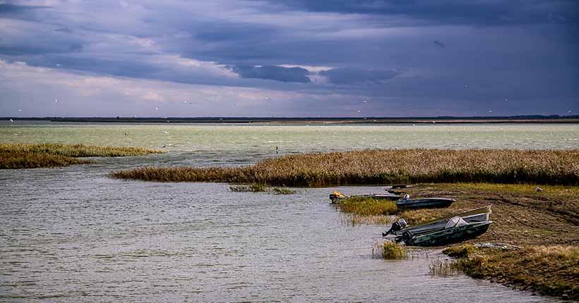 Дожди и похолодание придут на неделе в Новосибирск