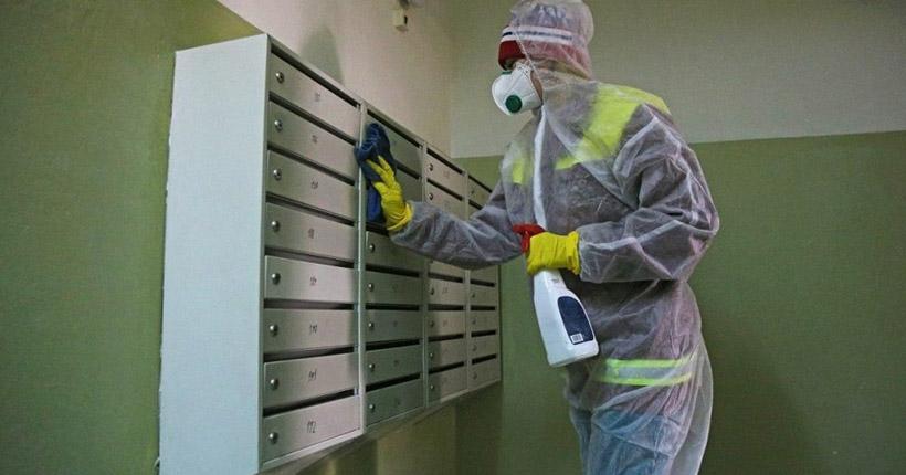 Санобработку многоквартирных домов усилят в Новосибирской области