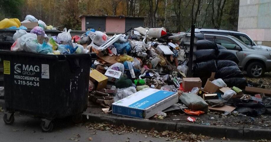 Жители Новосибирска пожаловались на гигантскую гору мусора возле жилого дома