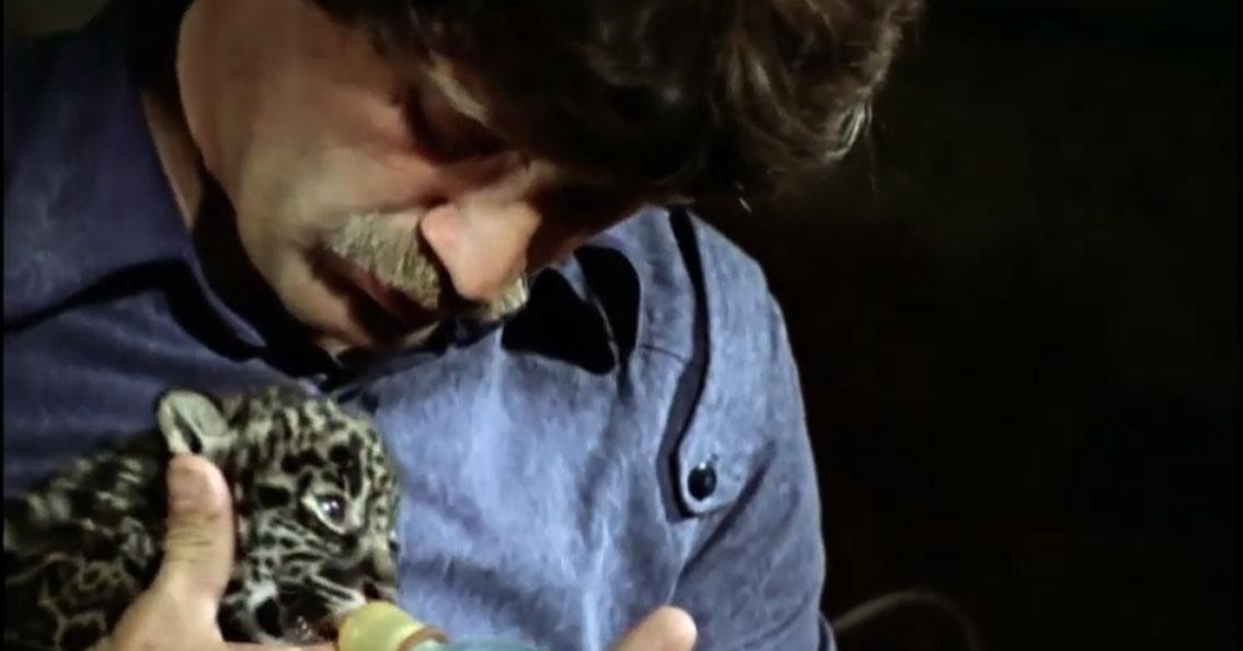 Новосибирский зоопарк начал показывать фильмы к 80-летию со дня рождения Ростислава Шило