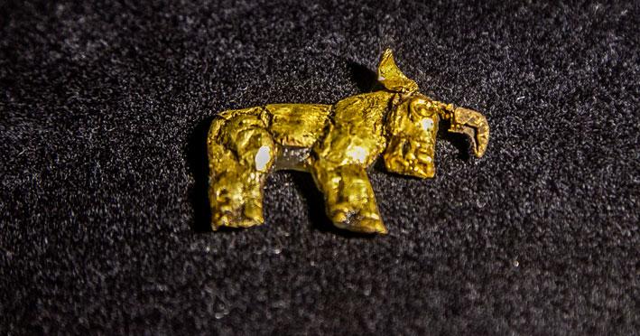 В Новосибирске показали удивительный путь золота — от его поиска до готовых изделий
