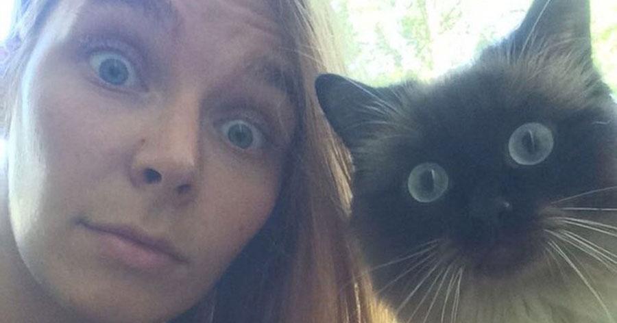 Новосибирская татуировщица создала санаторий для кошек