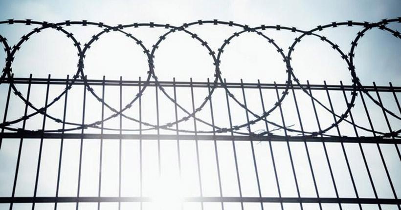 СК прокомментировал сообщения о бунте заключённых в новосибирской колонии