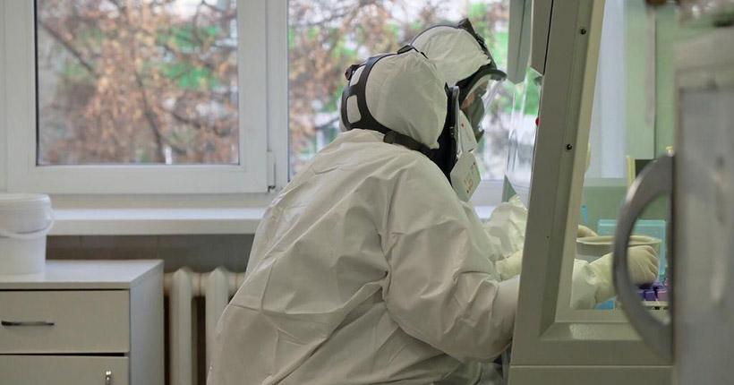 Новые лаборатории для тестирования на коронавирус открываются в Новосибирской области