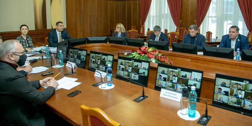 Газификация, чистая вода, хорошие дороги — депутаты новосибирского заксобрания назвали приоритеты бюджета-2021