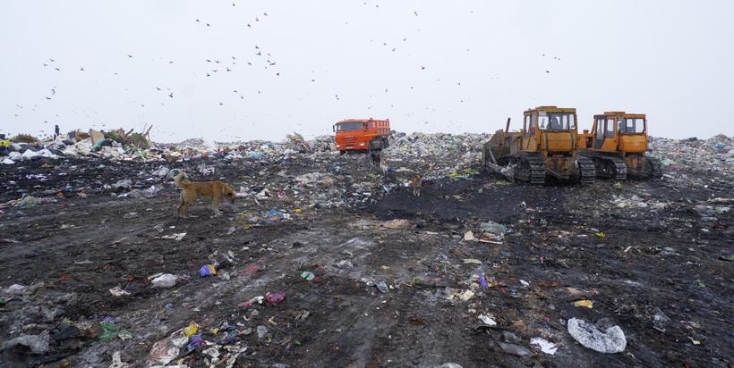 Прокуратура выясняет, какие предприятия загрязняют воздух в Новосибирске