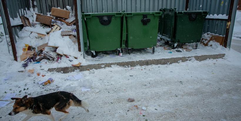 Новосибирские депутаты и общественники обсудили «мусорную» реформу