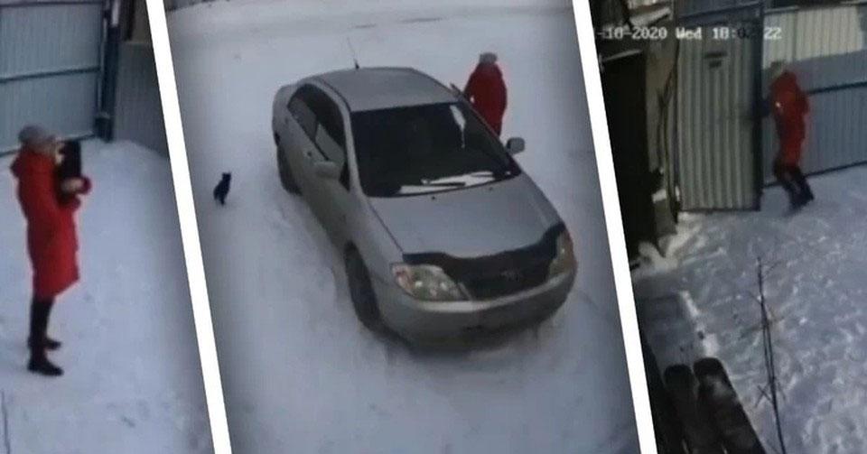 Новосибирцы ополчились на женщину, подбросившую щенка под двери приюта